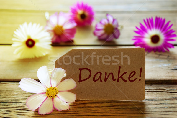 Sunny Label With German Text Danke With Cosmea Blossoms Stock photo © Nelosa