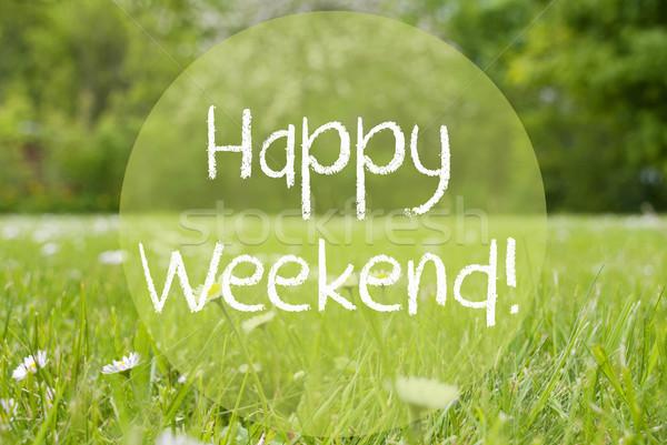 Gras Meadow, Daisy Flowers, Text Happy Weekend Stock photo © Nelosa