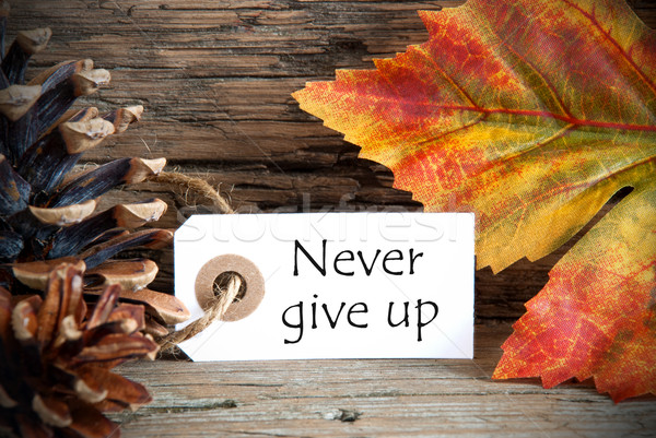 Autumn Label with Never Give Up Stock photo © Nelosa