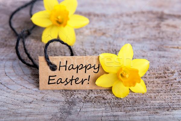 Happy Easter Stock photo © Nelosa