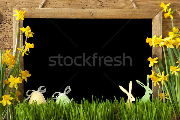 Narcissus, Easter Egg, Bunny, Copy Space Stock photo © Nelosa