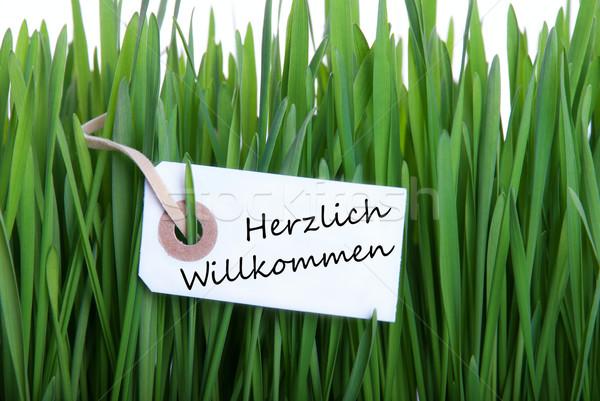 Label with Herzlich Willkommen Stock photo © Nelosa