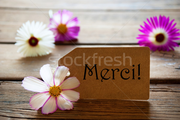 Label With French Text Merci With Cosmea Blossoms Stock photo © Nelosa