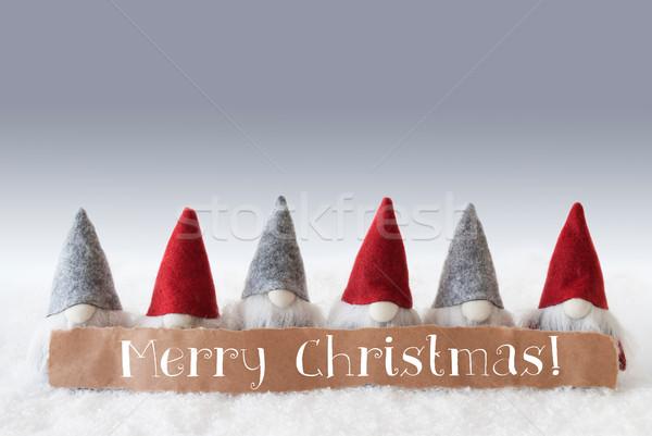 зеленый текста веселый Рождества Label английский Сток-фото © Nelosa