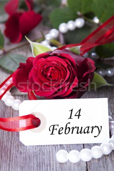 Rosy bianco etichetta san valentino fiori primavera Foto d'archivio © Nelosa