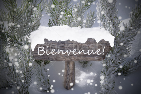 Stock photo: Christmas Sign Snowflakes Fir Tree Bienvenue Means Welcome