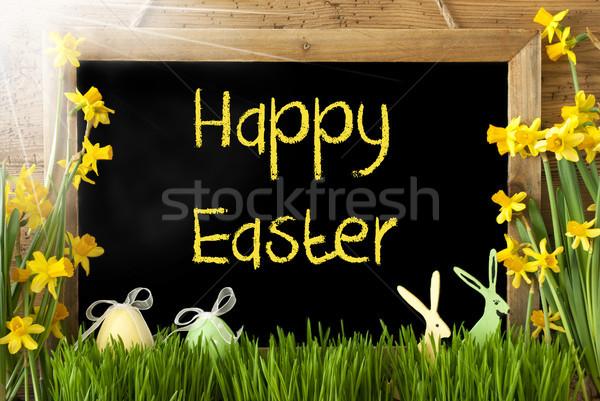 Güneşli yumurta tavşan metin iyi paskalyalar tahta Stok fotoğraf © Nelosa