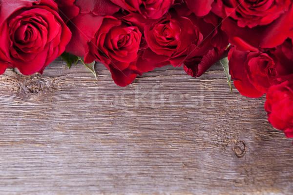 Background with Roses Stock photo © Nelosa