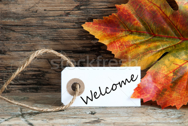 Autumnal Background with Welcome Stock photo © Nelosa