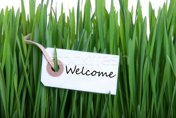 Label in the Gras with Welcome Stock photo © Nelosa