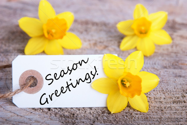 Label with Season Greetings Stock photo © Nelosa