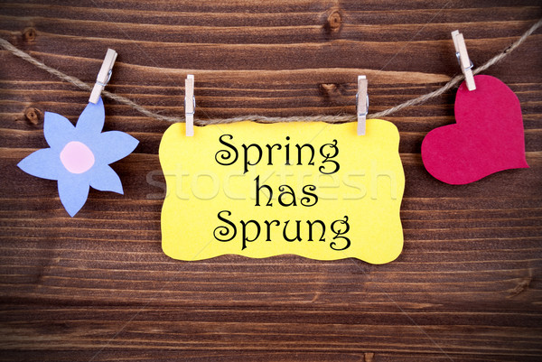 Yellow Label With Life Quote Spring Has Sprung Stock photo © Nelosa