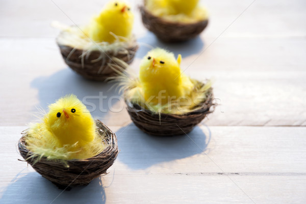 Four Chicks In Easter Baskets With Yellow Feathers Stock photo © Nelosa