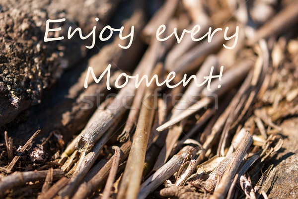 Bamboo Background Enjoy Every Moment Stock photo © Nelosa