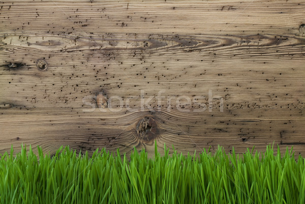 Aged Wooden Background, Gras, Copy Space Stock photo © Nelosa