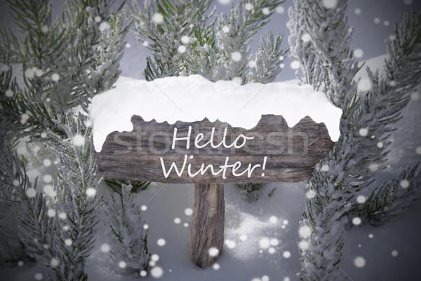 Noel imzalamak kar taneleri metin merhaba Stok fotoğraf © Nelosa