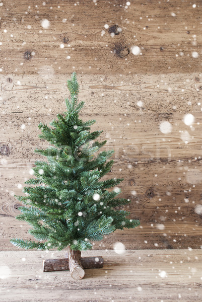 Stock photo: Vertical Christmas Tree, Aged Wooden Background, Snowflakes, Shabby Chic