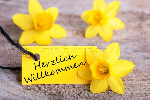 Herzlich Willkommen on a Tag Stock photo © Nelosa