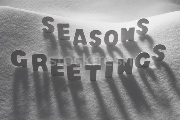 White Word Seasons Greetings On Snow Stock photo © Nelosa