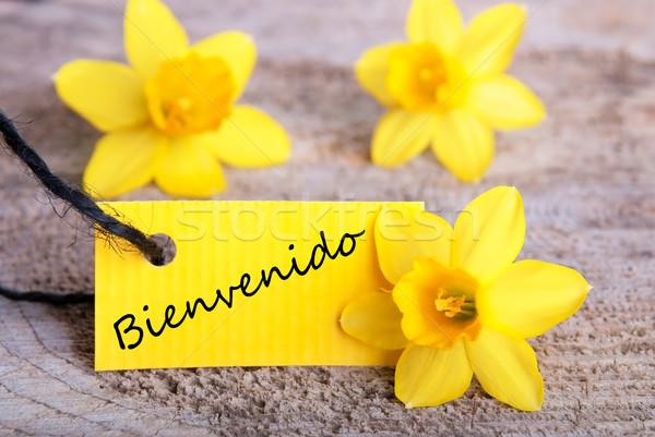 Bienvenido Tag Stock photo © Nelosa