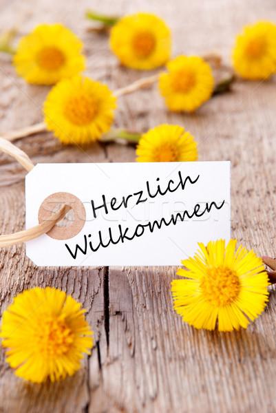 Yellow Flowers with Herzlich Willkommen Stock photo © Nelosa