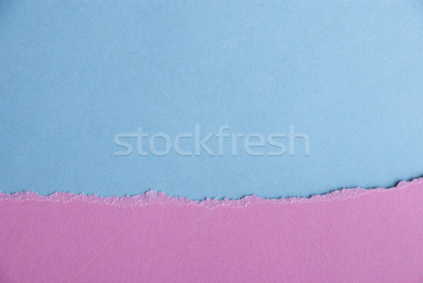 Rosa blu texture carta carta texture baby Foto d'archivio © Nelosa
