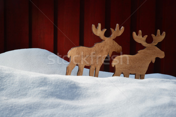 Christmas Card On White Snow With Moose Coyple , Copy Space  Stock photo © Nelosa
