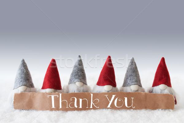 Gnomes, Green Background, Text Thank You Stock photo © Nelosa