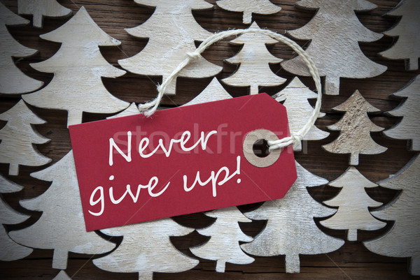 Red Christmas Label With Never Give Up Stock photo © Nelosa