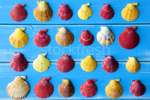 Yellow And Red Seashells As Texture On Blue Wooden Background Stock photo © Nelosa