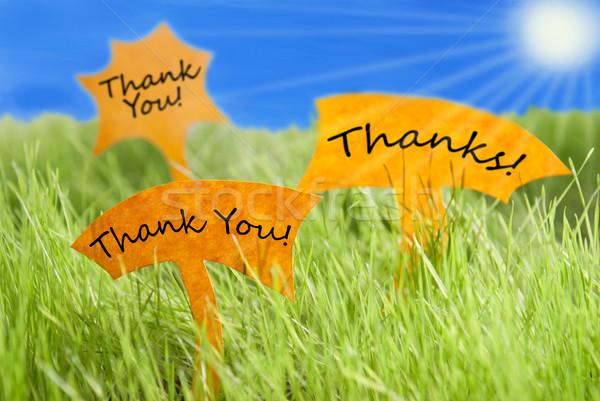 üç etiketler teşekkür ederim teşekkürler mavi gökyüzü güneş Stok fotoğraf © Nelosa