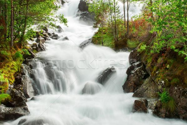 Vízesés friss zöld tavasz nyár fák Stock fotó © Nelosa