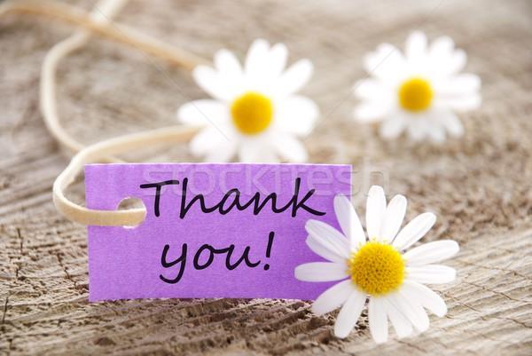Etiqueta obrigado roxo flor casa contato Foto stock © Nelosa