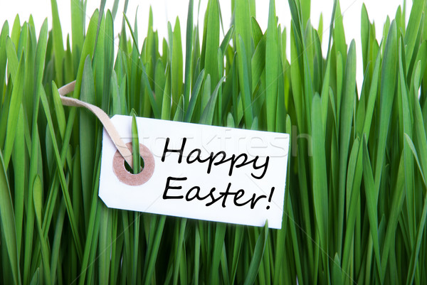 Label with Happy Easter Stock photo © Nelosa