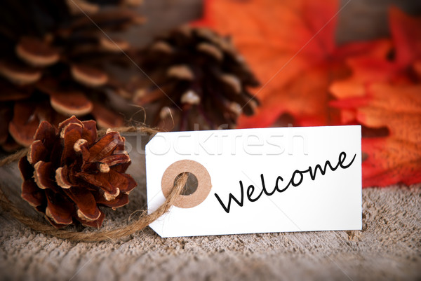 Fall Label with Welcome Stock photo © Nelosa