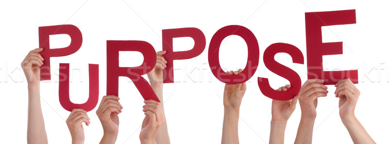 Many People Hands Holding Red Word Purpose  Stock photo © Nelosa