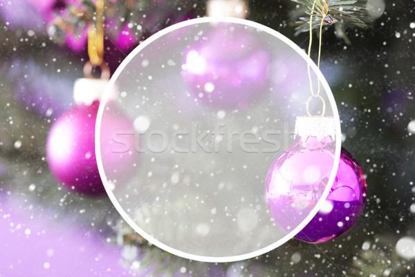Foto stock: árvore · de · natal · rosa · quartzo