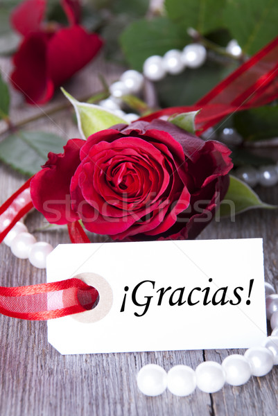 Stock photo: Background with Gracias