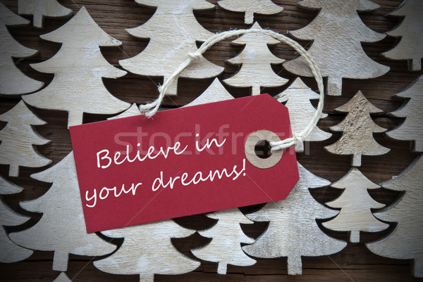 Red Christmas Label With Believe In Your Dreams Stock photo © Nelosa