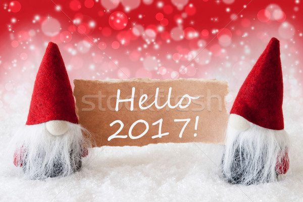 Red Christmassy Gnomes With Card, Text Hello 2017 Stock photo © Nelosa