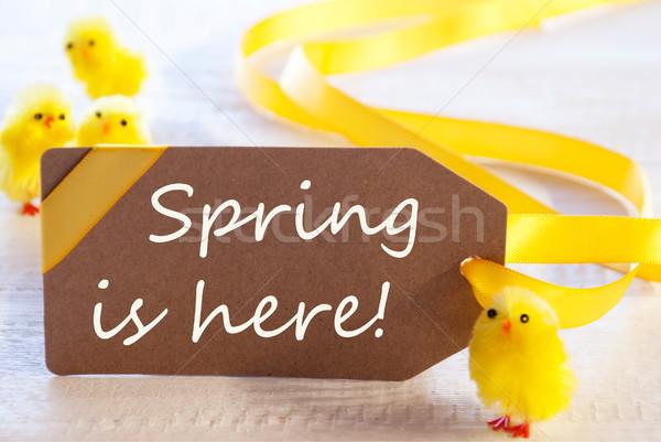 Páscoa etiqueta garotas texto primavera aqui Foto stock © Nelosa