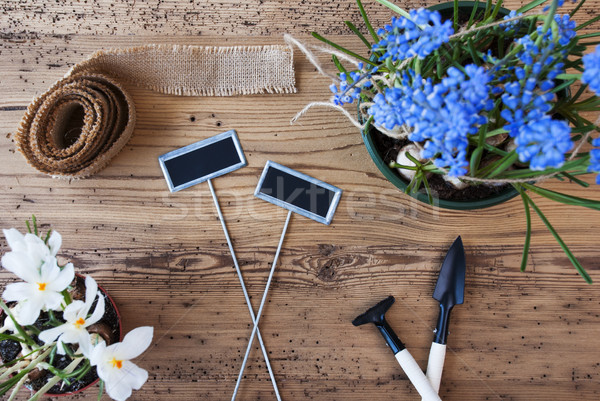 Flowers, Signs, Copy Space For Advertisement, Gardening Tools Stock photo © Nelosa