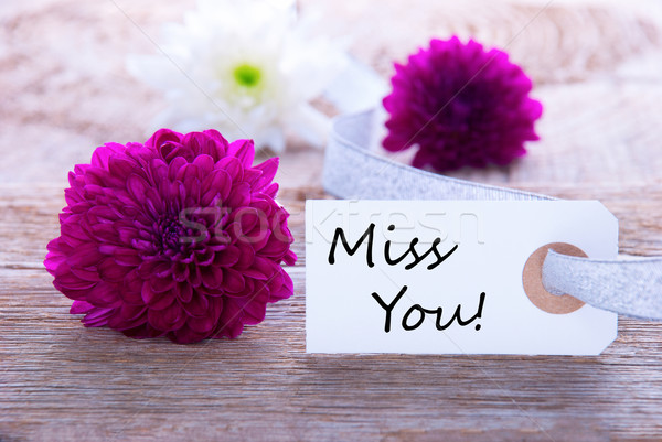 Label with Miss You Stock photo © Nelosa