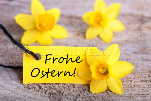 Label with Frohe Ostern Stock photo © Nelosa