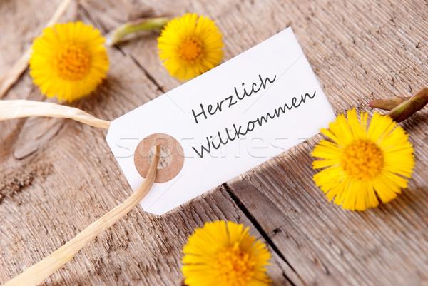 White Banner with Herzlich Willkommen Stock photo © Nelosa