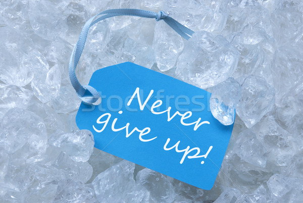 Label On Ice With Never Give Up Stock photo © Nelosa