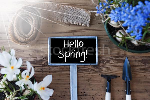 Sunny Flowers, Sign, Text Hello Spring Stock photo © Nelosa