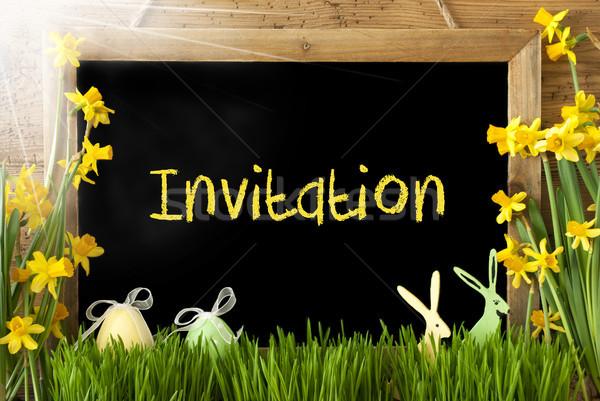 Sunny Narcissus, Easter Egg, Bunny, Text Invitation Stock photo © Nelosa