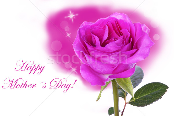 Rose with Happy Mothers Day Stock photo © Nelosa