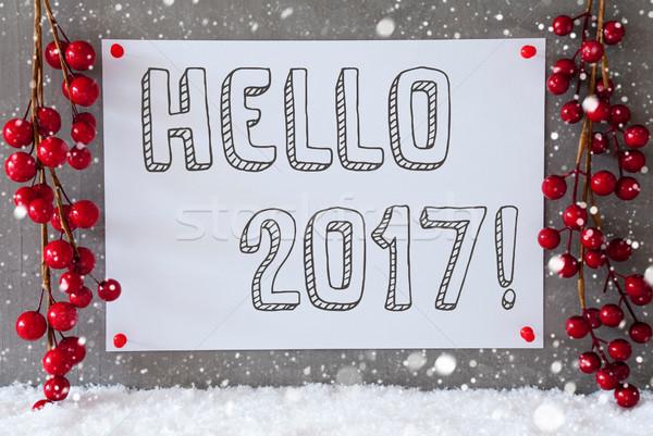 Etiket kar taneleri Noel dekorasyon metin merhaba Stok fotoğraf © Nelosa